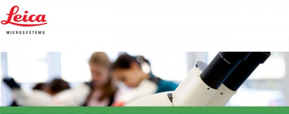 Digital Classroom Options