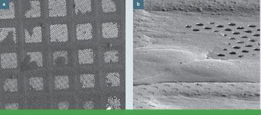 cryo electron tomography email